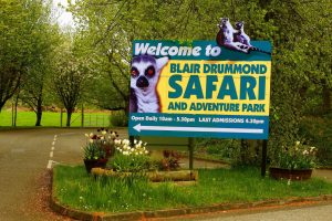 blair-drummond-safari-park
