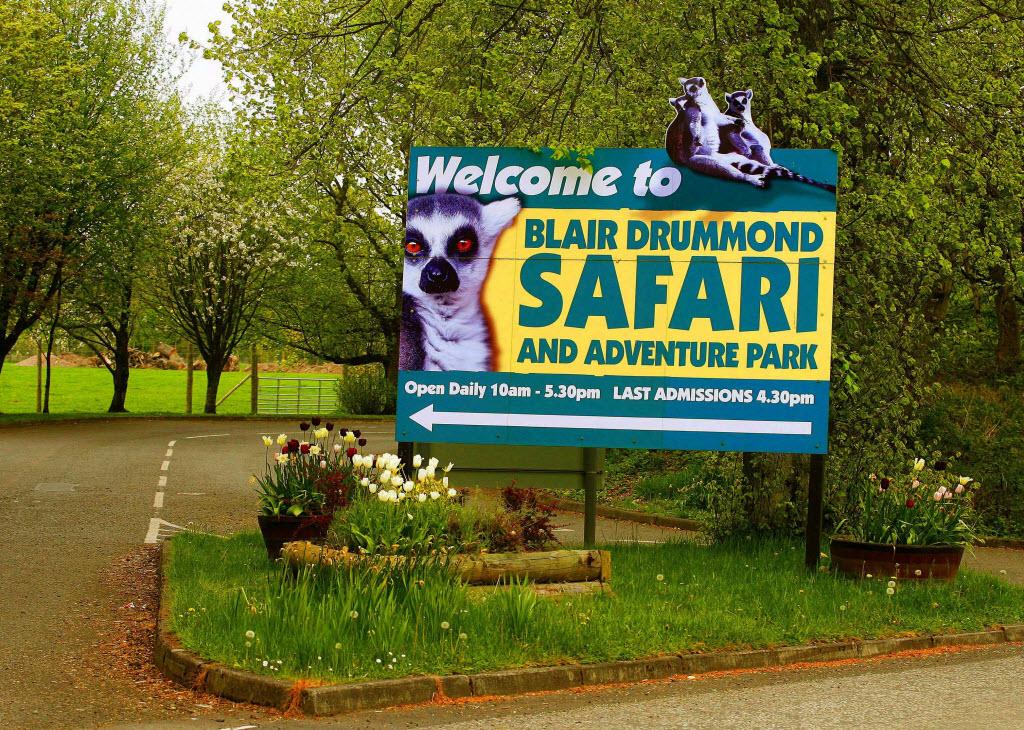 Blair Drummond Safari Park Animals Blair Drummond Safari Park