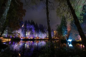 Enchanted Forest in Pitlochy, Perthshire