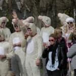 Fans enjoying the Melrose Sevens 2013