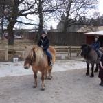 pony trek rothiemurchus estate
