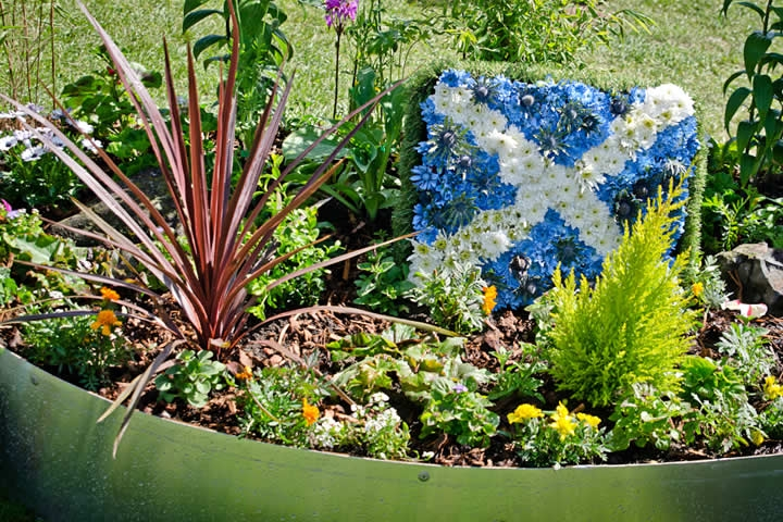 Gardening Scotland 2013 © Kenny Lam