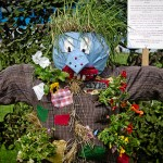 Scarecrow at Gardening Scotland © Kenny Lam
