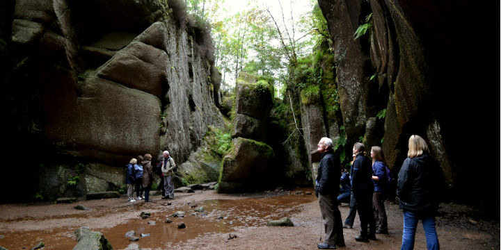 A group looks up at the rocky walls of the vat and the forest above