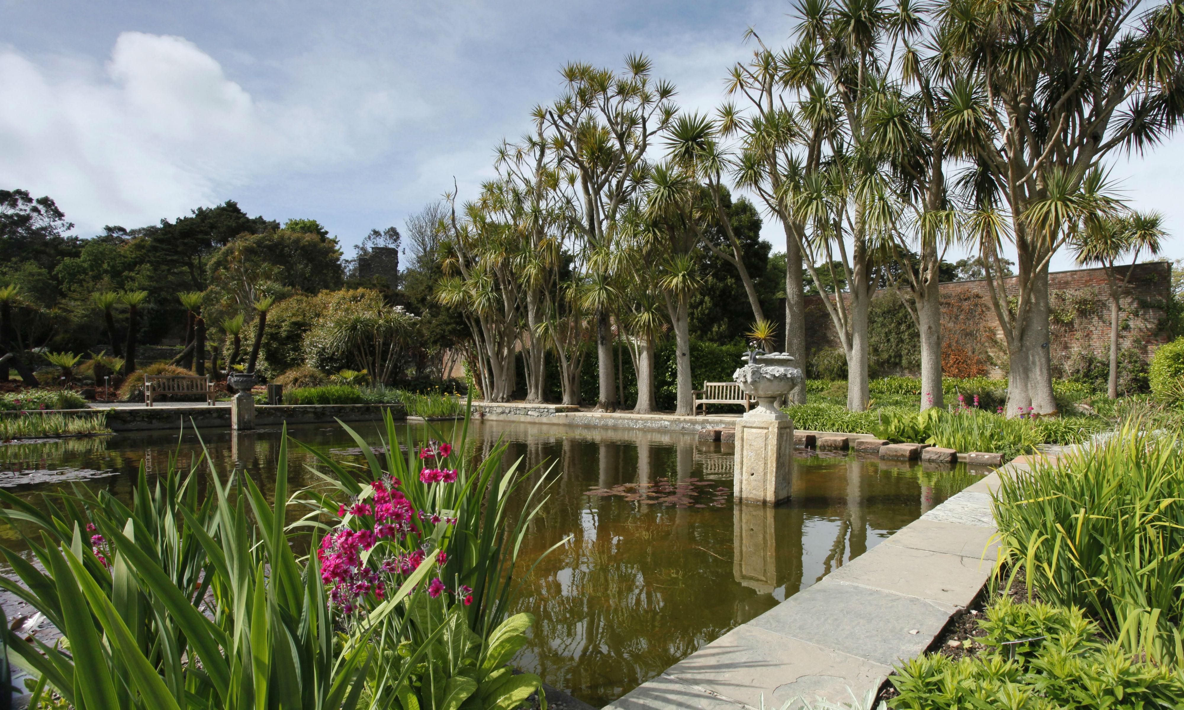 The Exotic Logan Botanic Garden