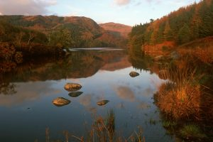 Loch Trool, Galloway Forest Park