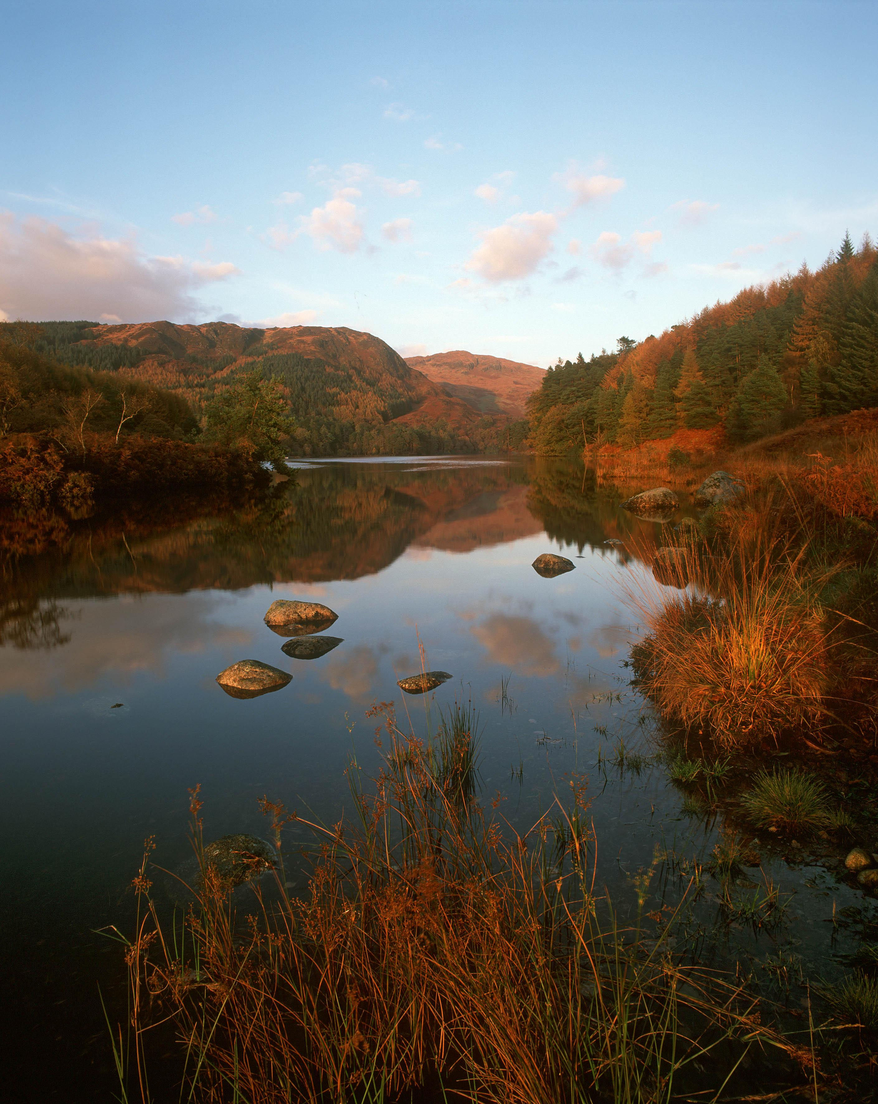 Loch Trool Galloway Forest Park Home Park View Dumfries