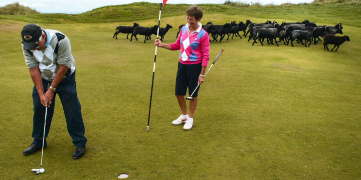 Putting at Machrihanish Dunes