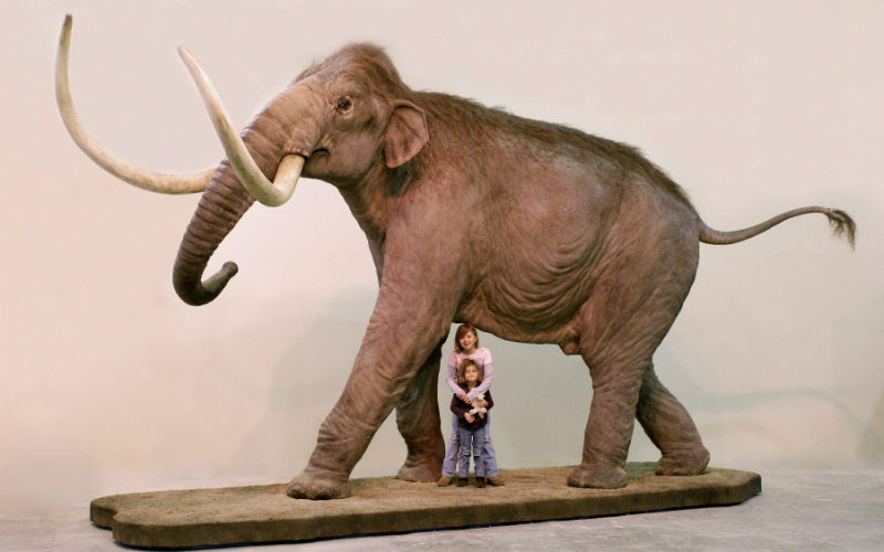 Two children pose with a life-size model of a Columbian Mammoth © Blue Rhino Studio