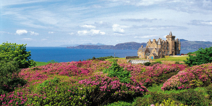 Looking over flowering rhododendron bushes to Glengorm Castle, with a view to the coast beyond.
