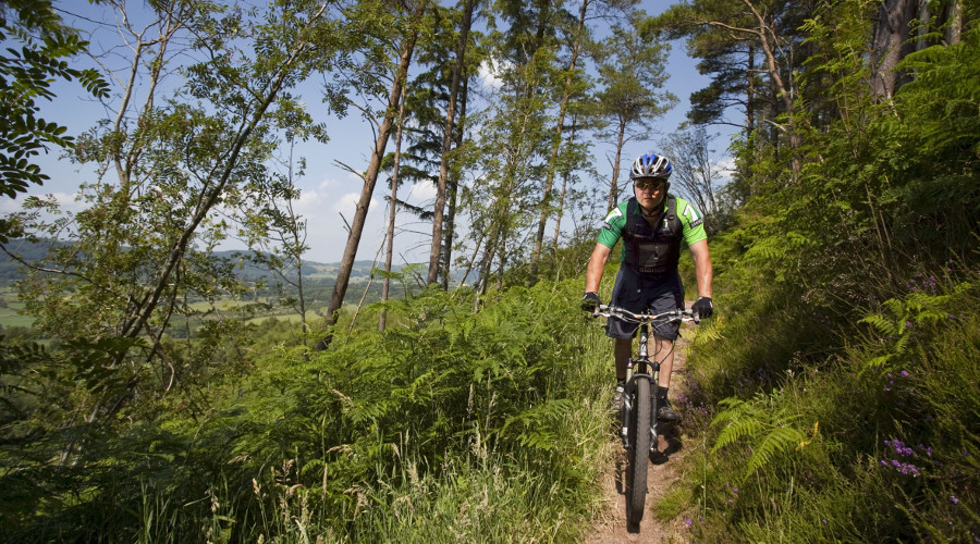 Mountain biking at Dalbeattie Forest