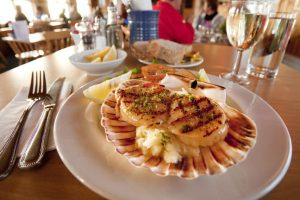 Chargrilled scallops on a bed of mash presented in a shell