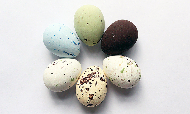 Six realistic chocolate quail's eggs of various colours arranged in a circle.