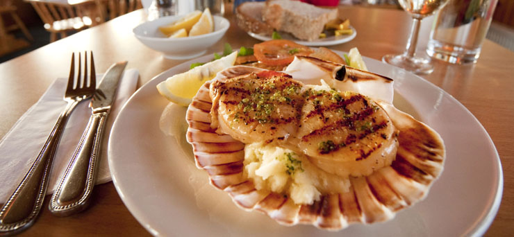 Scallops on a bed of mash presented in a shell