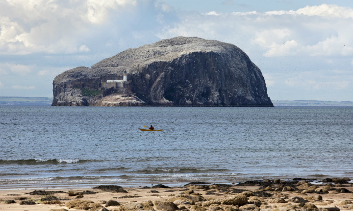 Sea kayaking off Seacliff beach with the Bass Rock behind.