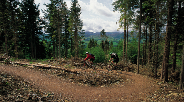 Mountain biking at the Glentress 7 Stanes centre