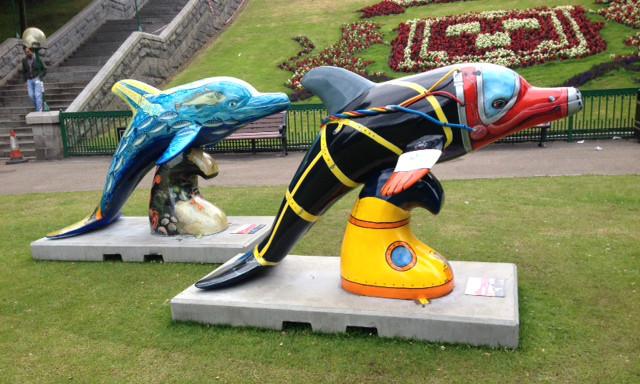 Aberdeen's Wild Dolphins. © Siobhan Miller.