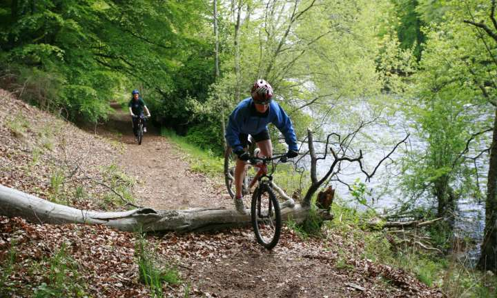 A mountain biker negotiates an obstacle at Kenmore, Perthshire