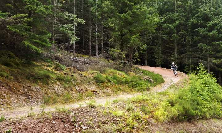 Tackling a bend at the Moray Monster Trails. Credit Developing Mountain Biking in Scotland, DMBS