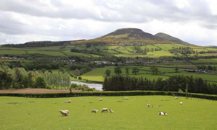View towards the river tweed at Newstead with the Eildon hills visible beyond, Scottish Borders.