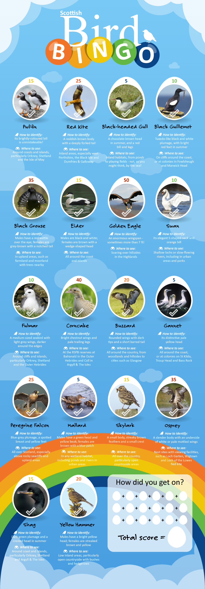 Scottish bird bingo