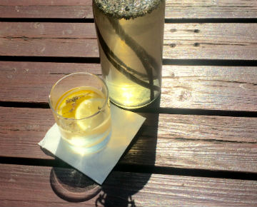 Elderflower and Lavender Cordial