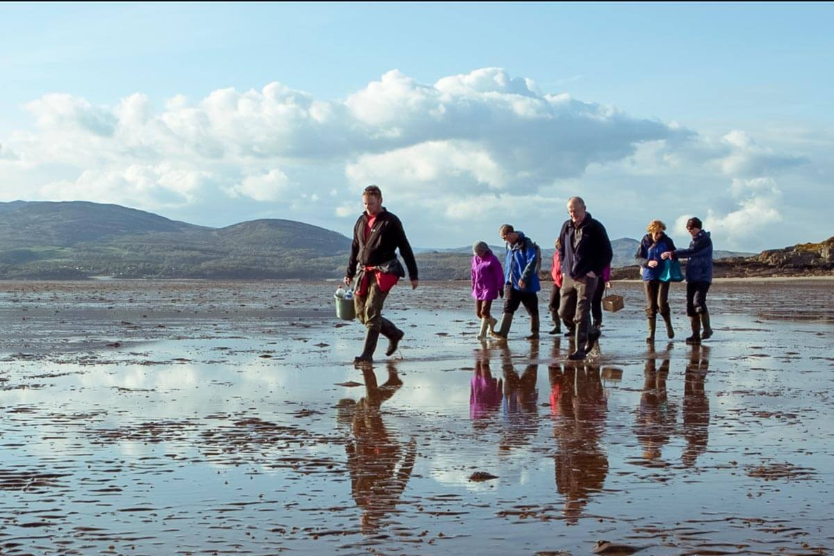Galloway Wild Foods Coastal Foraging, Dumfries e Galloway