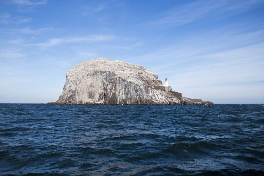 Bass Rock, Firth of Forth, East Lothian