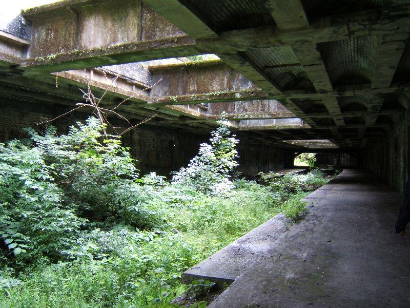 Glasgow Botanic Gardens Railway Station