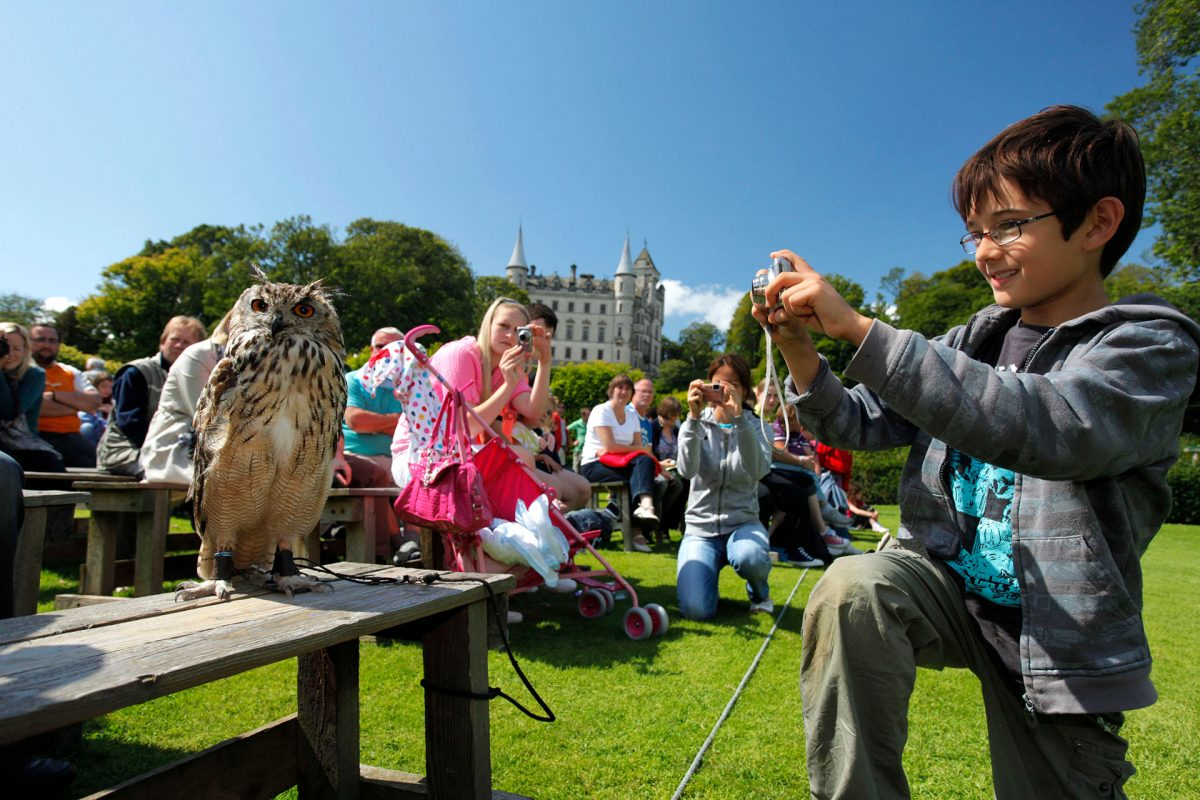 Spectators get up close to an owl during a falconry demonstration by resident falconer, Andy Hughes at Dunrobin Castle, near Golspie, Sutherland, Highlands of Scotland Picture Credit : Paul Tomkins / VisitScotland