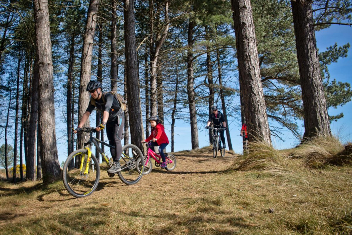 Family mountain biking in Tentsmuir Forest, Kingdom of Fife