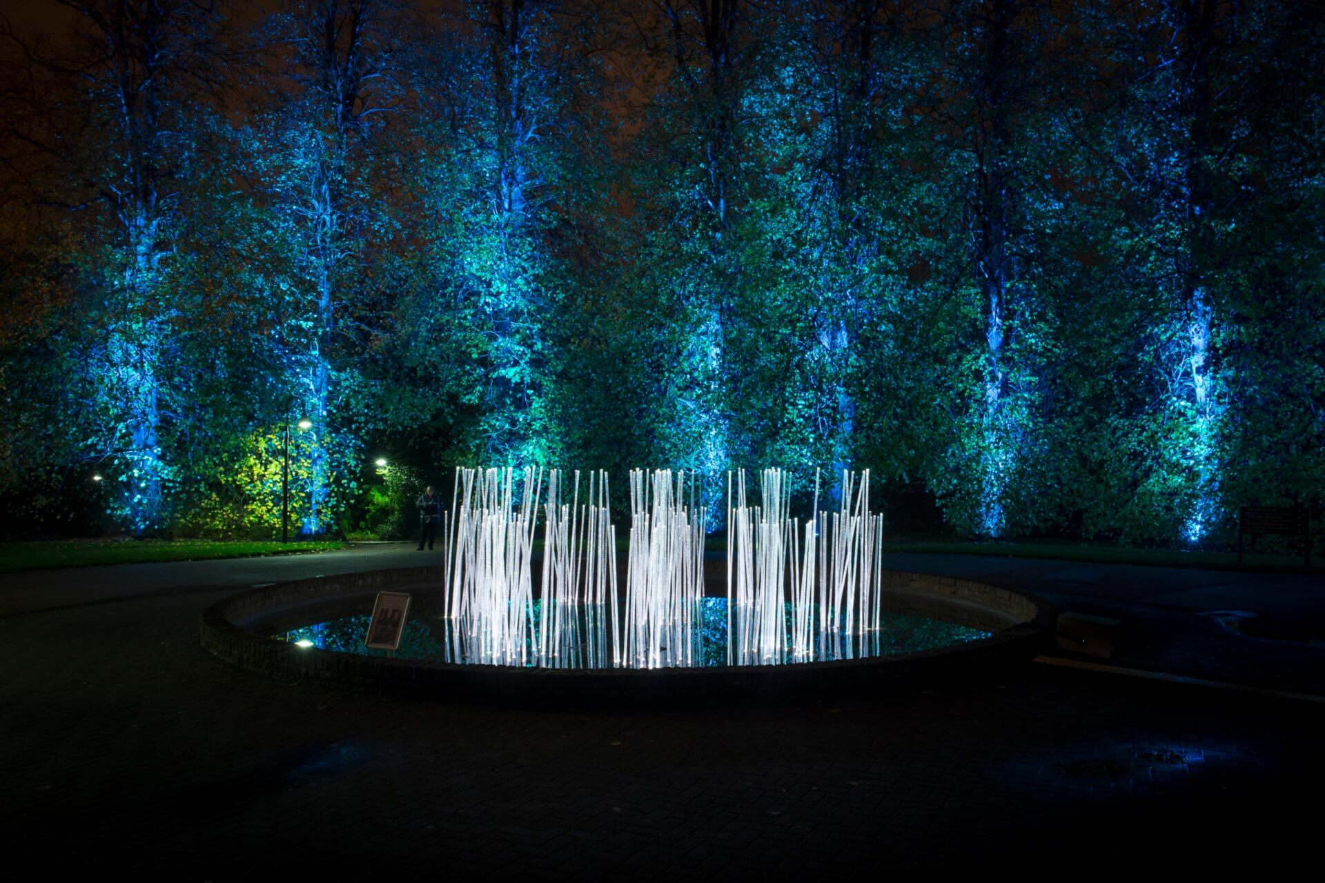 10 Enchanting Sound and Light Shows in Scotland Not to Miss