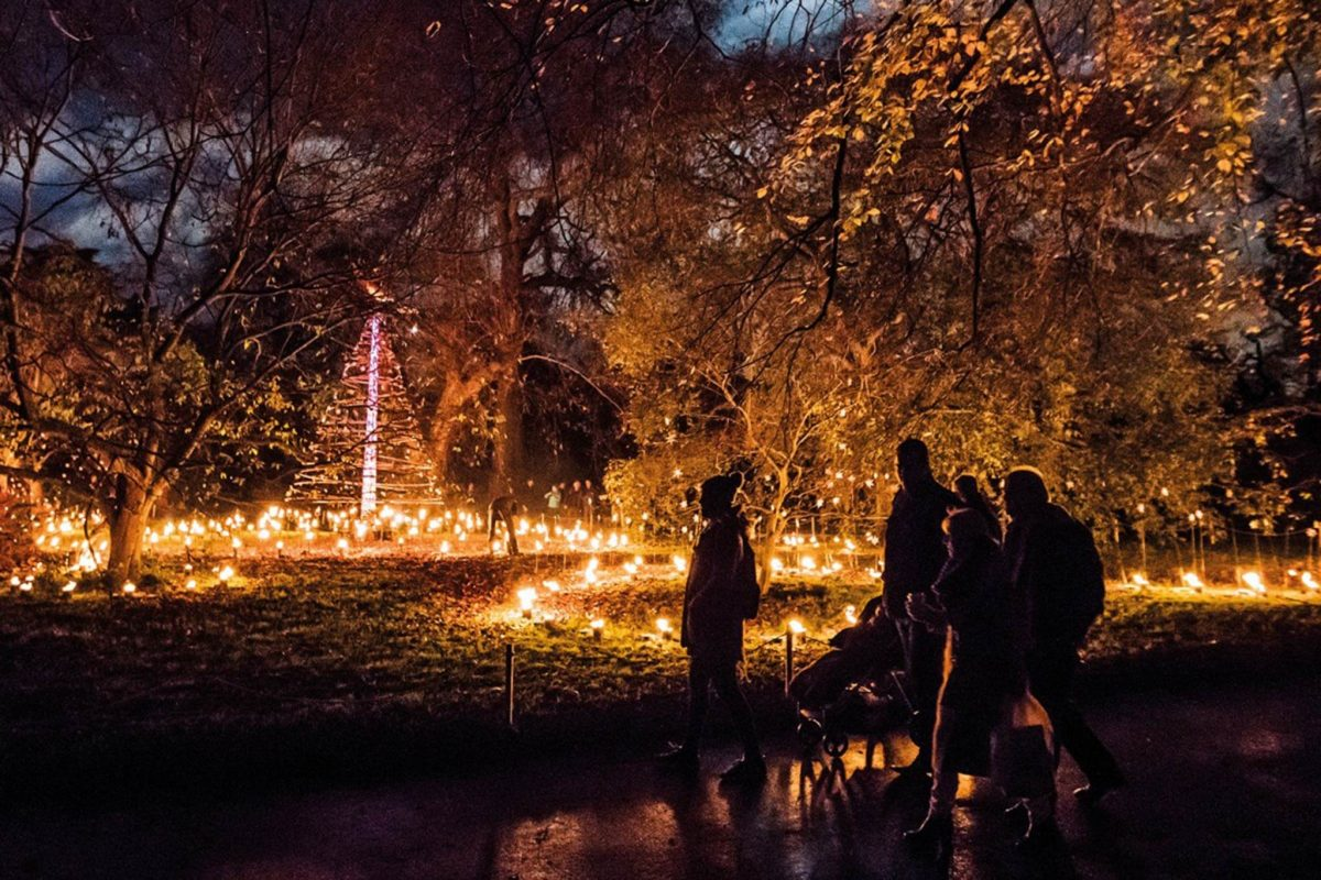 Christmas at the Botanics, Edinburgh
