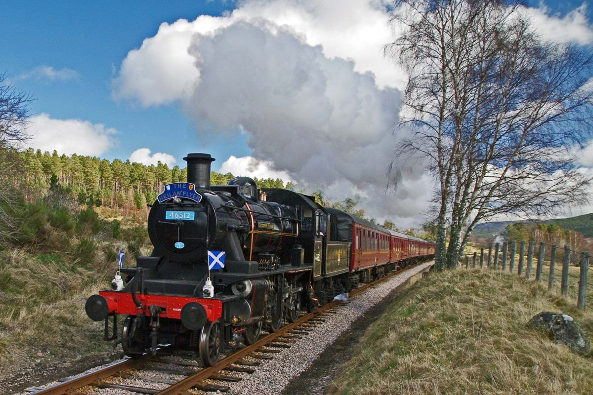 A steam train puffs past woodland.