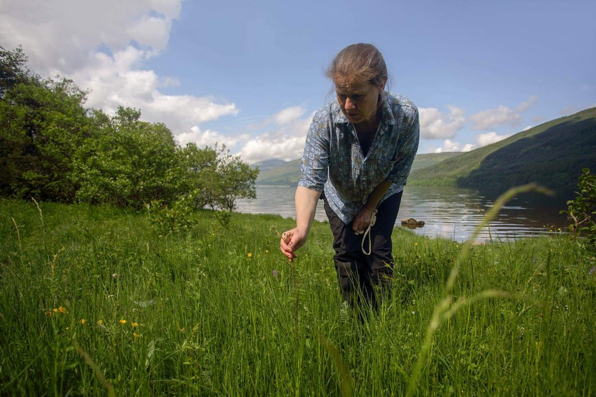 Charlotte Flower forages for natural flavourings on the shores of Loch Tay, Perths