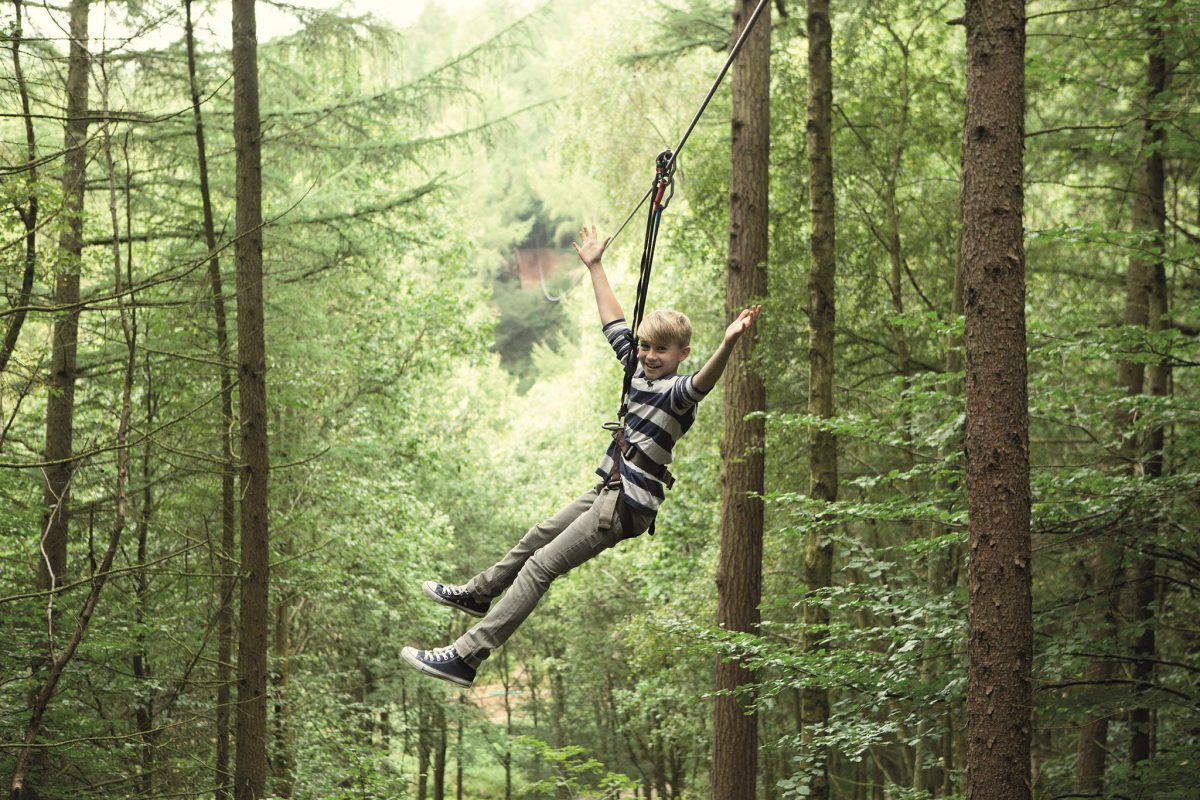 Zip wire fun at Go Ape