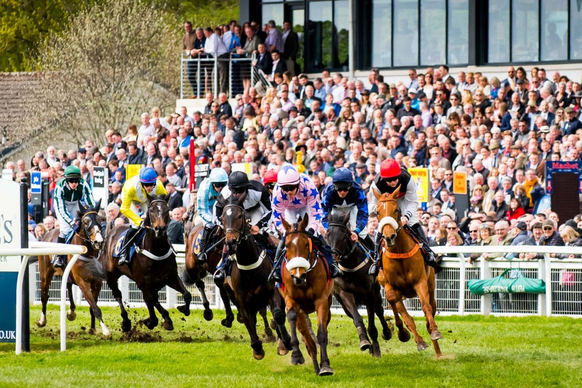 Thundering hooves at Perth Races