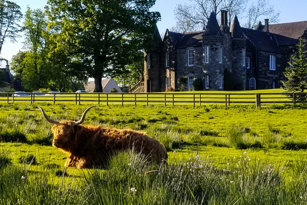 The bucolic and lovely Meldrum House Hotel