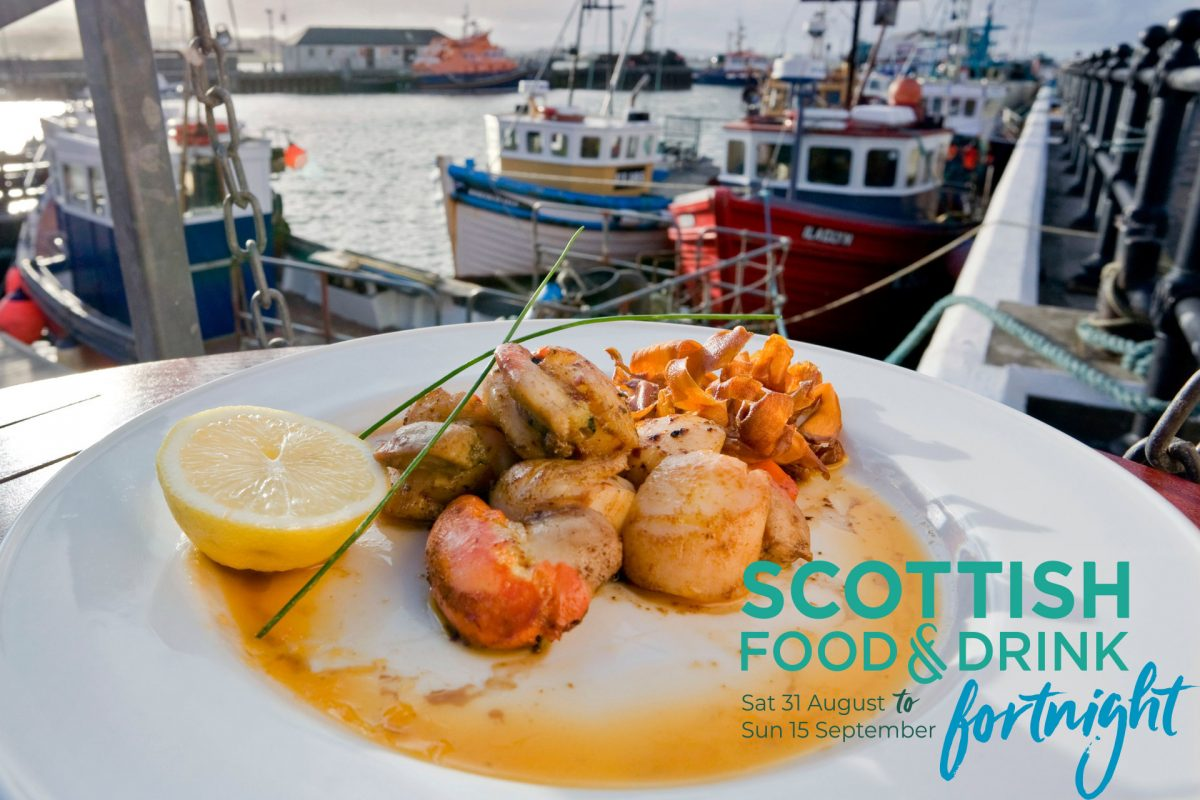 Scallops and seafood by Kirkwall Harbour, Orkney