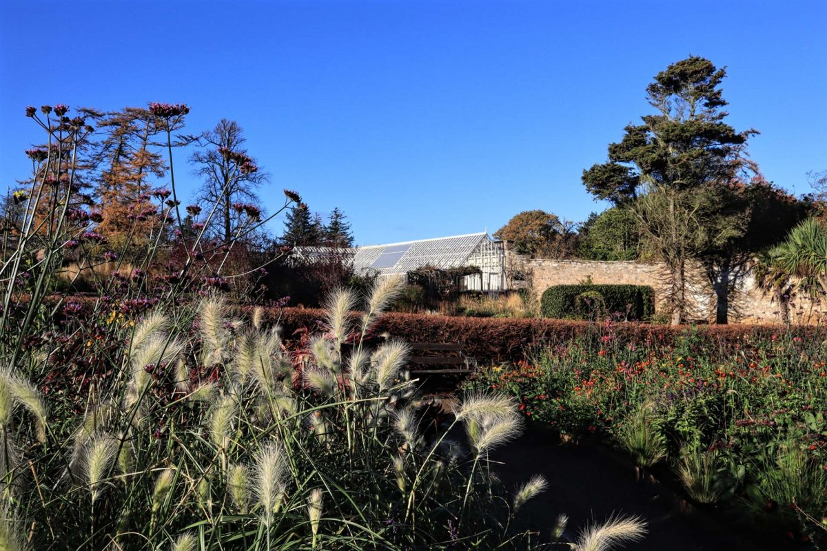 The potager and glasshouse at Cambo Gardens, Kingsbarns, Fife