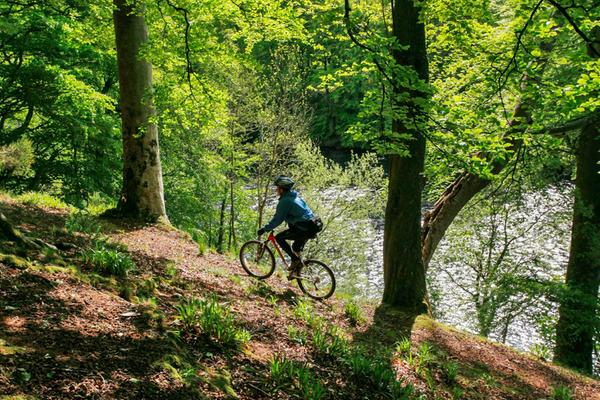 Mountainbiken am Fluss Tay bei Kenmore