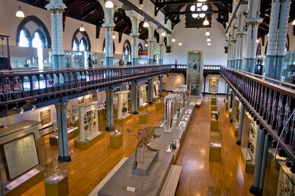One of the display rooms inside the Hunterian Museum and Art Gallery