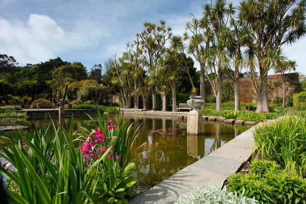 Logan Botanic Garden, Port Logan, Dumfries & Galloway
