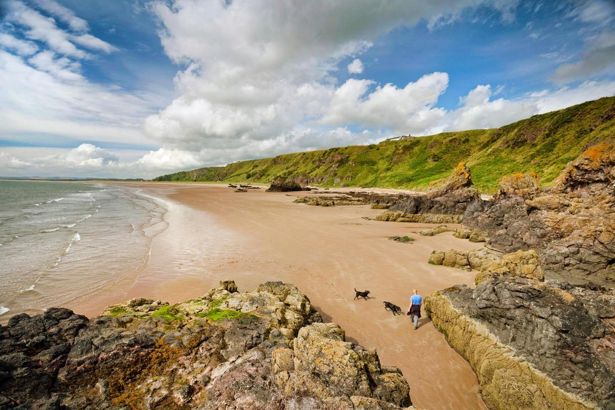 A dog walker stretches his legs at the St Cyrus National Nature Reserve on the Aberdeenshire coast