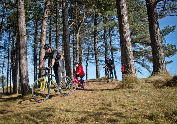 A family mountain biking in Tentsmuir Forest, Fife
