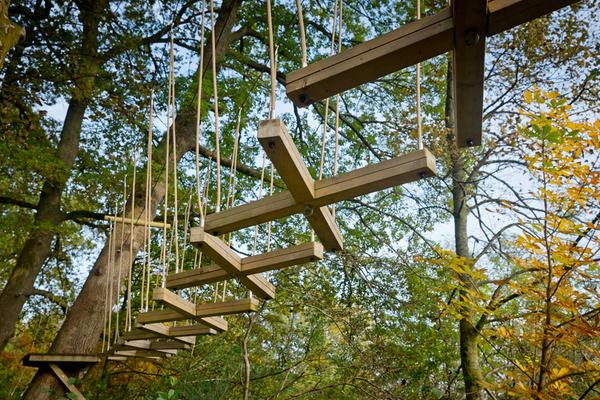 TreeZone Aerial Adventure Course, Loch Lomond Shores