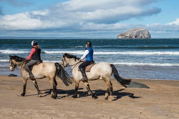 Horse riding at Seacliff beach © Kenny Lam