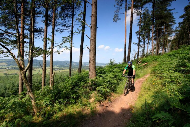 Mountain Bikers On The Red Trail Moyle Magic At The Dalbeattie