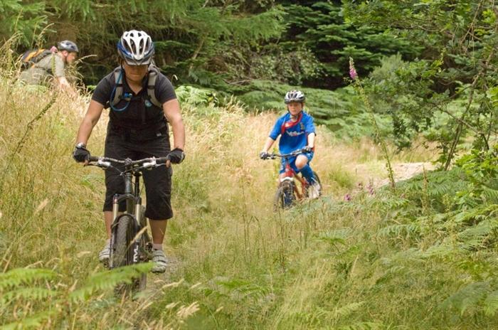 54ff23e8bcc Kirroughtree 7stanes, near Newton Stewart – Mountain biking ...