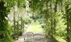 Elizabeth MacGregor, Cottage Garden Plants